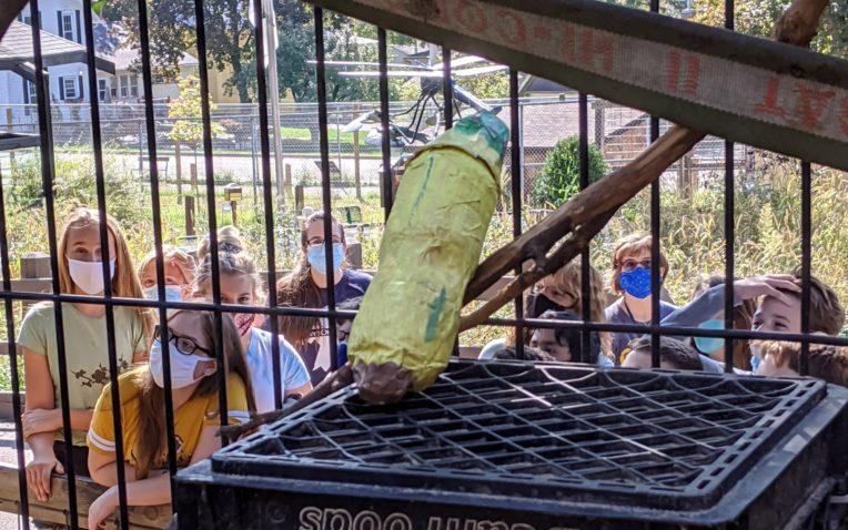 Sharing STEM at the Zoo